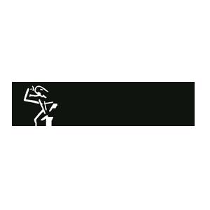 Logotipo de la Asociación Argentina de Anatomía
